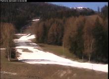 Webcam Montchavin les Coches Ski en forêt