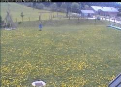 Webcam Villard de Lans / Correncon Jardin des neiges des Piou Piou